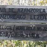 azanzoreak11